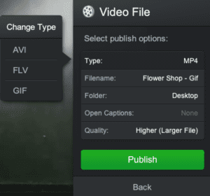 Save Video File Types