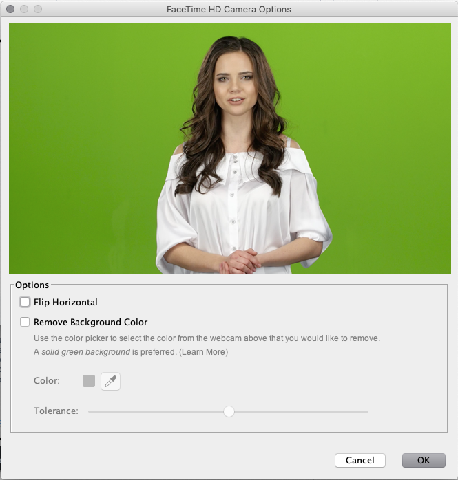 Screencast-O-Matic - Green-Screen Settings
